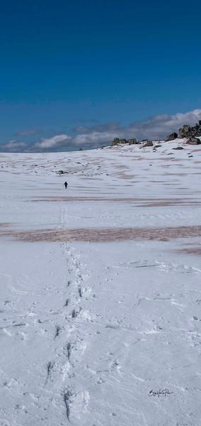 snow shoe 47.jpg