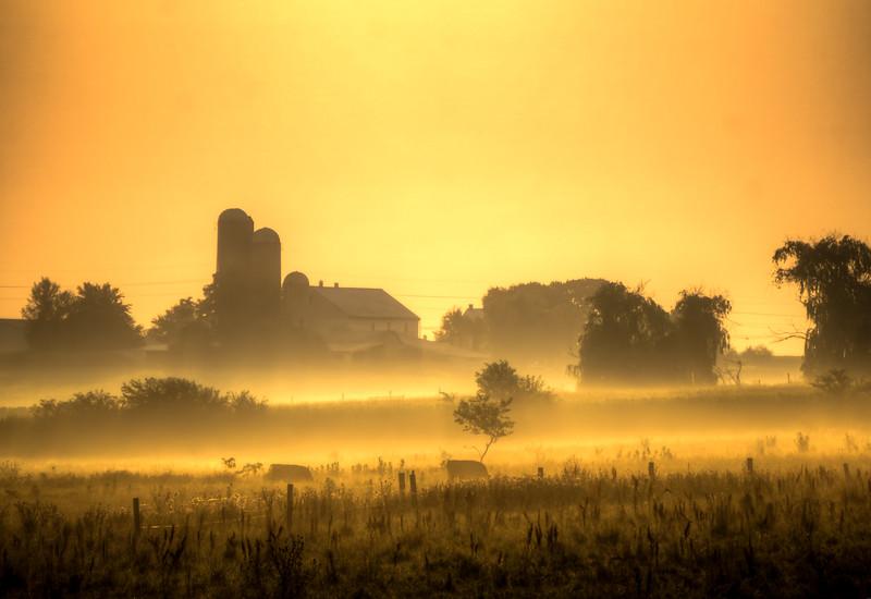 fog - sunrise farm in fog(p).jpg