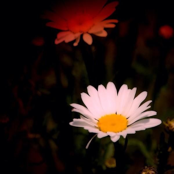 2012-06-22_1340365022.jpg