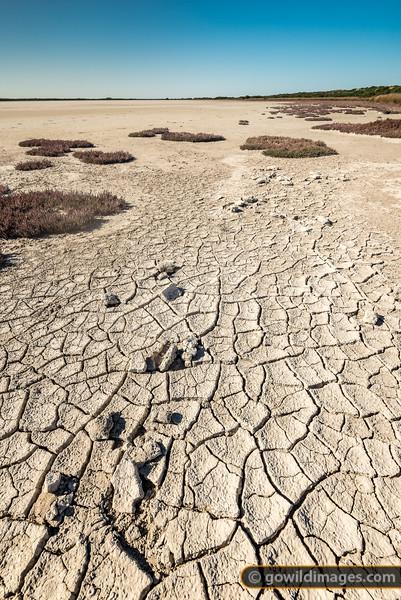 Southern Coorong Cracks