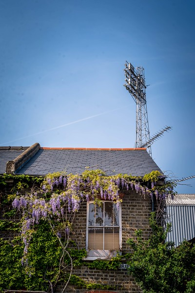 Brentford-3.jpg