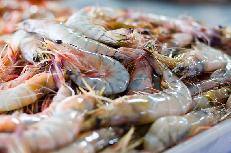 jumbo-shrimp_4854646849_o.jpg