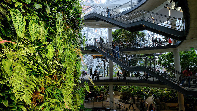 amazon-spheres-wide.jpg