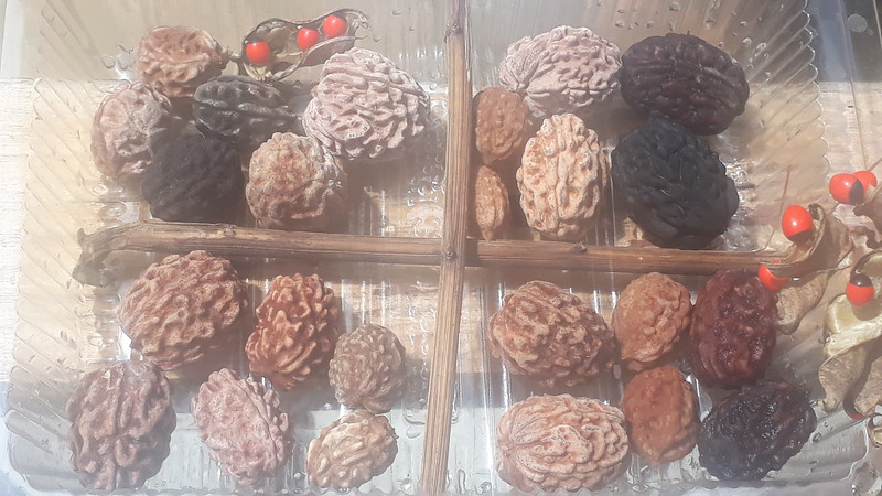 Dozen pairs of 3 and 4 mukhi Rudrakshas collected once