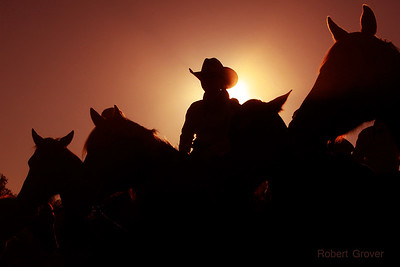 2011 Deseret Ranch Rodeo