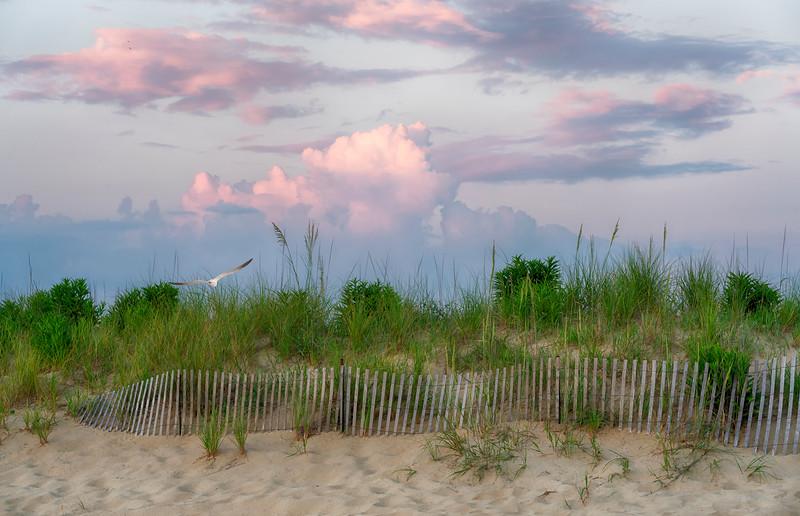 Sandbridge Beach, Virginia