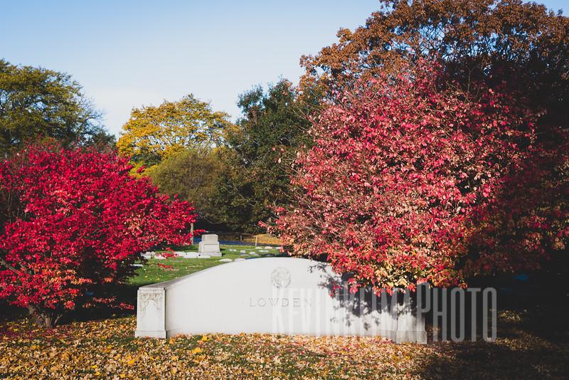 Graceland110218-218.jpg