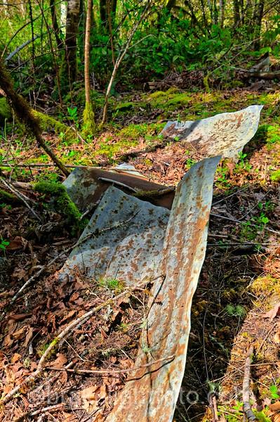 Old Dump Site