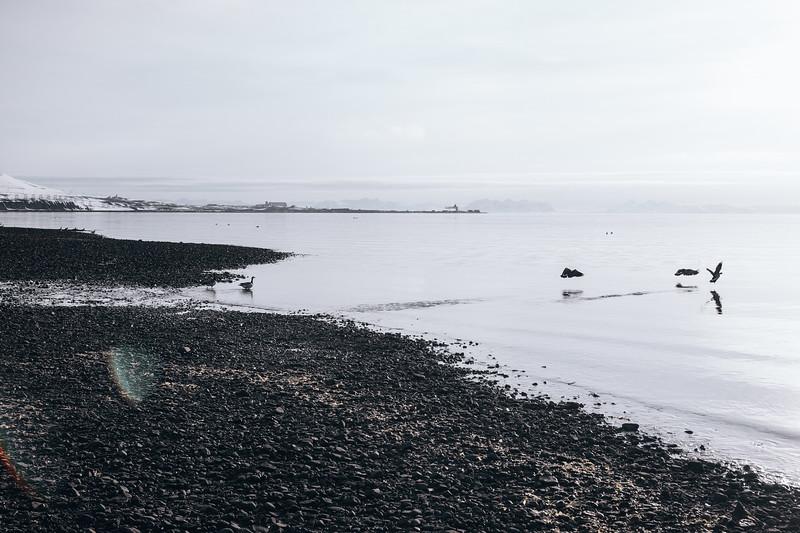 Svalbard-2013-18.jpg