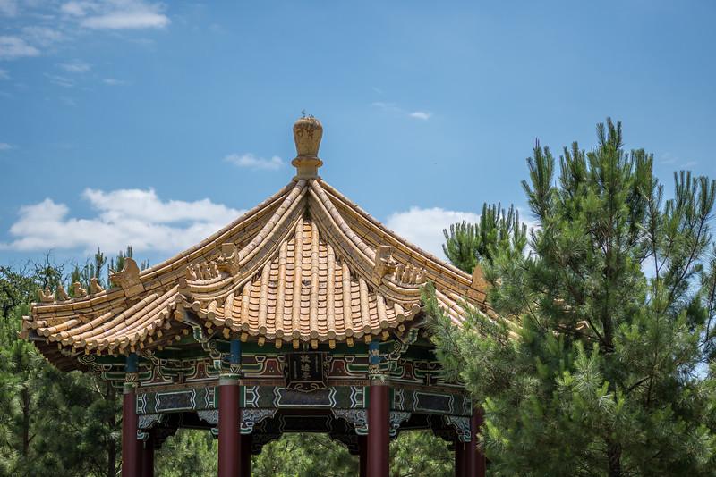 McGovern-Centennial-Gardens-9303-HDR.jpg