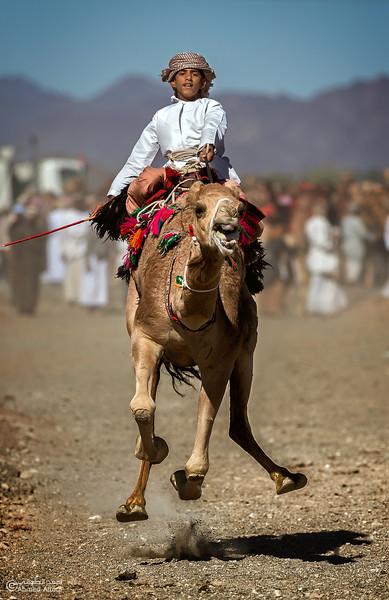 IMGL0353-1 copy- Camel Race.jpg