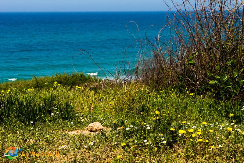 Netanya-9848.jpg