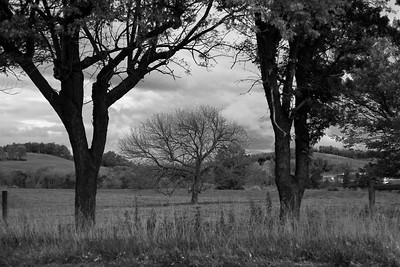 Autumn_Scenes