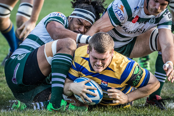 Shute Shield Semi Final 1, 30JUL16