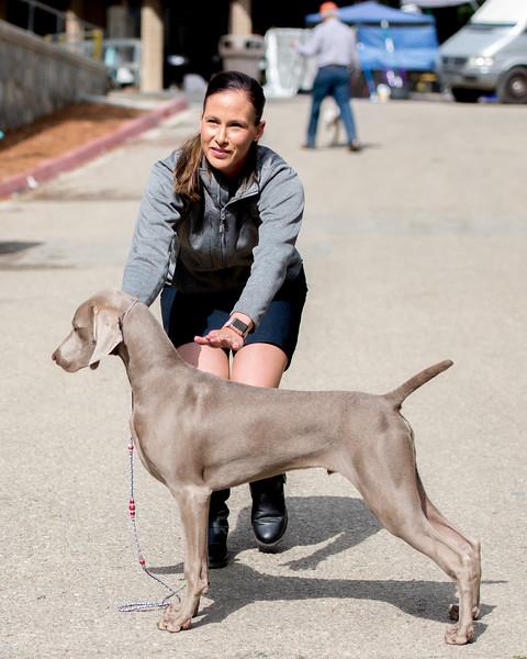 Flash with Owner Breeder Handler Becca