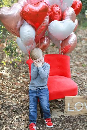 Hartfield Valentine Mini 2020