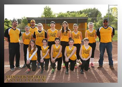 Crestview Youth Softball 2017