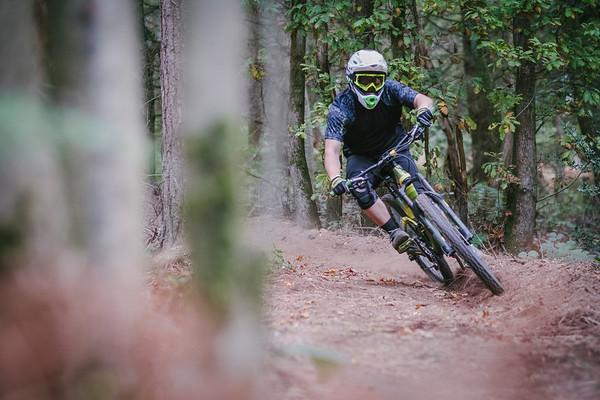 Ribbesford Downhill