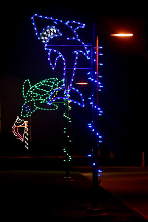 TAMUCC Lights
