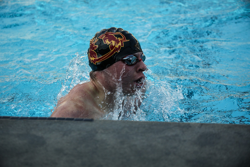 181111 CMS vs Chapman Swimming Diving-713.jpg
