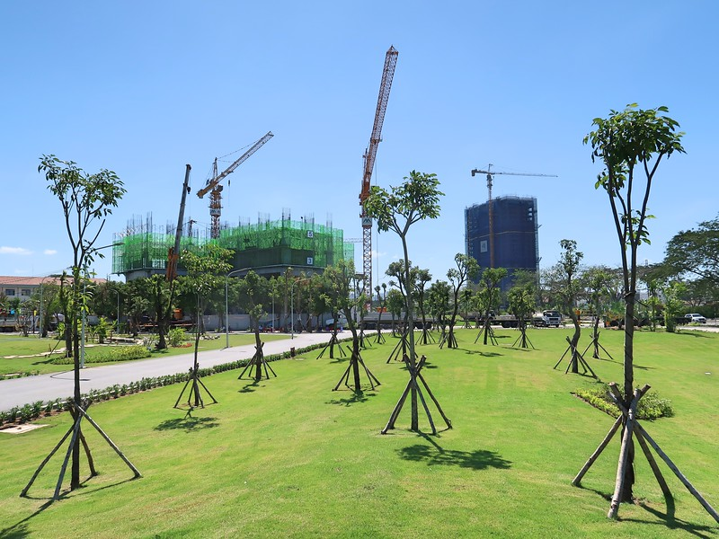 IMG_1533-eco-green-saigon-trees.jpg