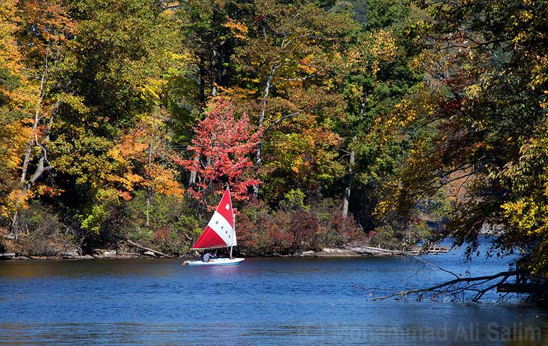 Sailing in Autumn web.jpg