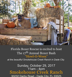 """2017-10-29...17th Annual Boxer Bash """"Howl-O-Ween"""