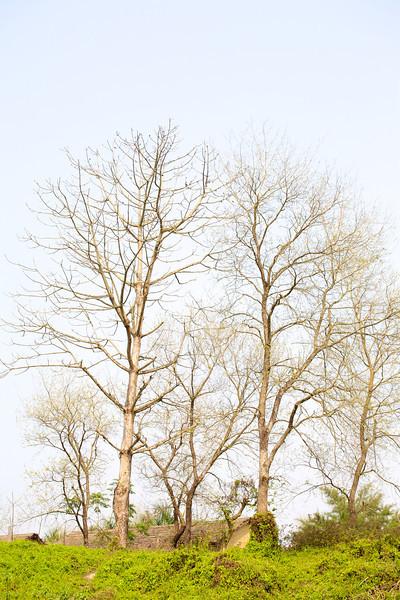 2007-02-21 at 14-11-01 - IMG_2035.jpg
