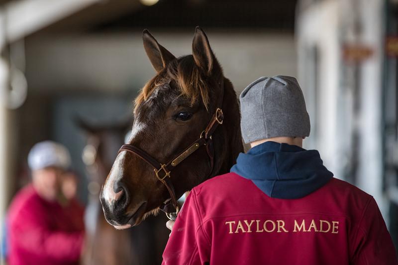 Taylor Made at Keeneland 11.08.18