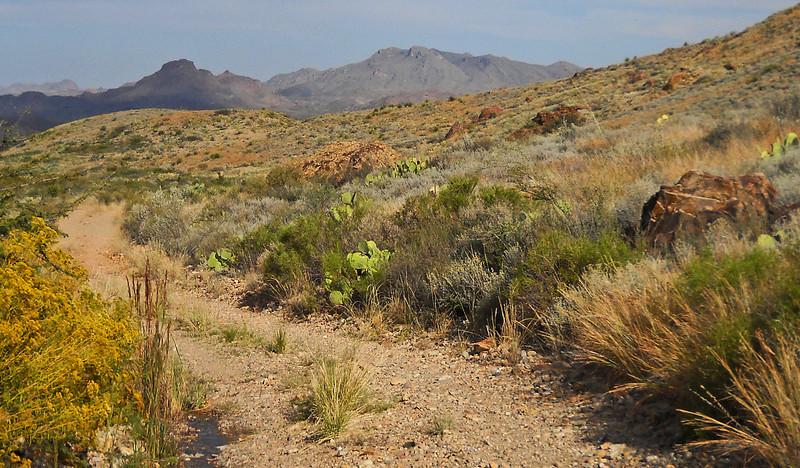 Down the trail close.jpg