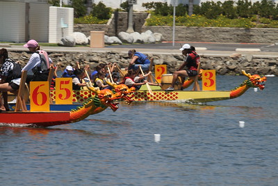 Dragon Boat Races 31JUL2010