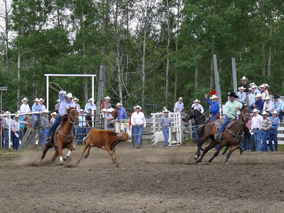 Team Roping Section 1