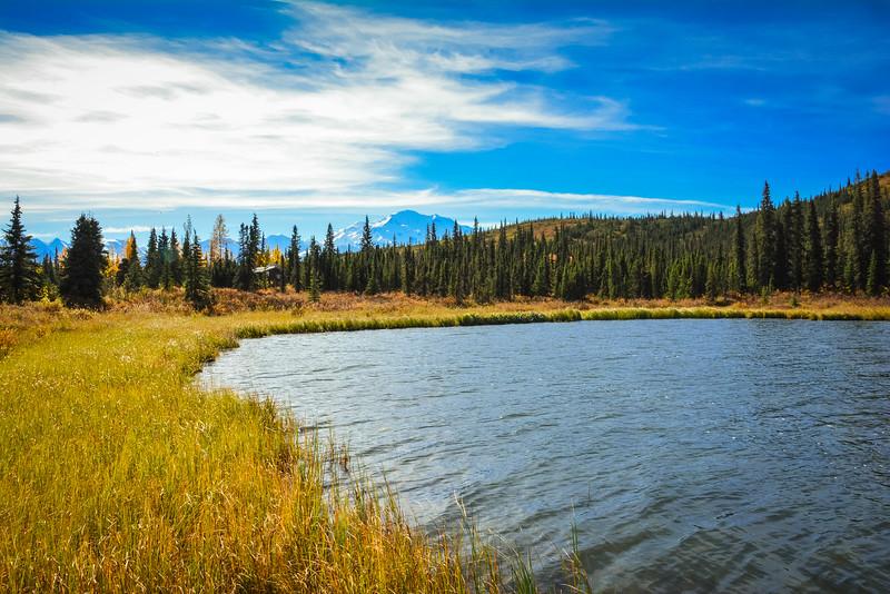 Denali-National-Park-130.jpg