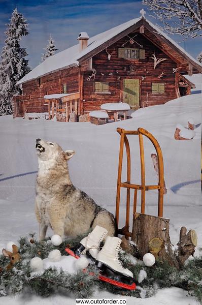 phototheatre-ski chalet-01.jpg