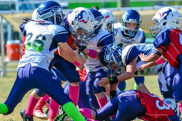 Junior Seahawks