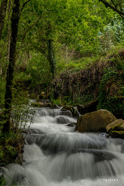 Rio de Montanha