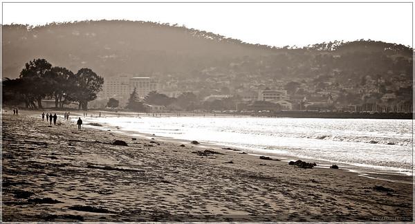 Monterey Beaches
