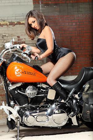 12-10-11 Harley