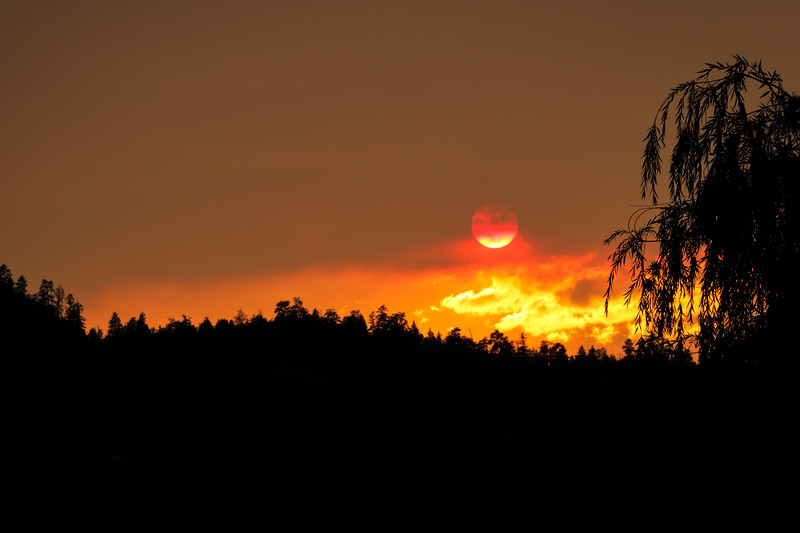 Day 240: Red Sun