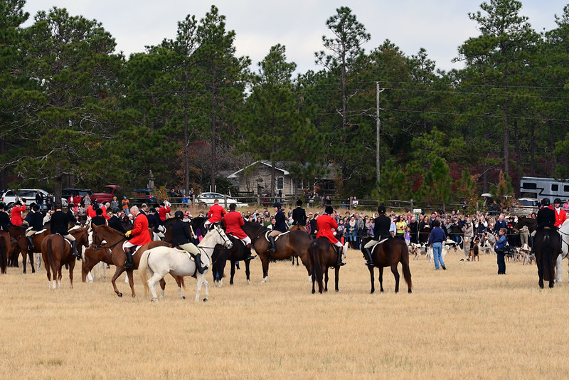 Moore County Hounds 2016 10.jpg