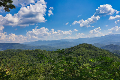 Cherokee ,  Fall 2019 :  [The Great Smoky Mountains NP]
