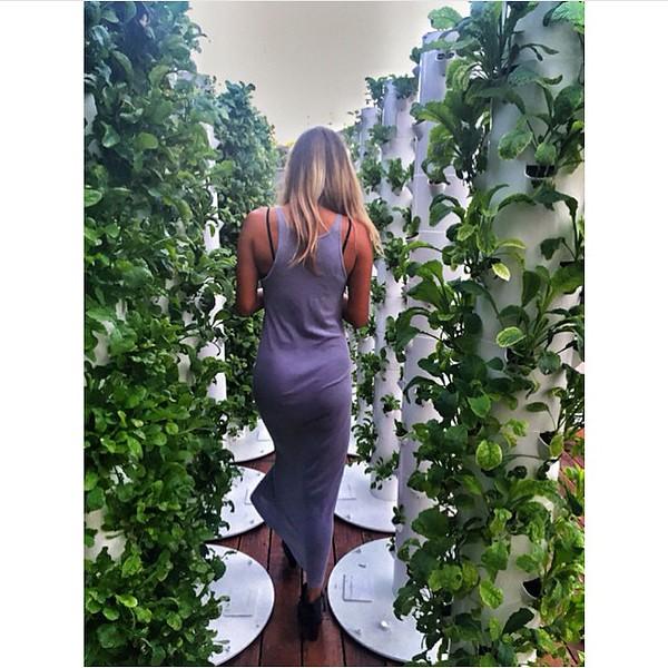conscious-FreshGreenSmoothies_com-Vegan-Intelligent-Compassionate-raworganicvegan-plantbased-greensmoothies-OrganicGardeningArt-Art-Aeroponics7785.jpg