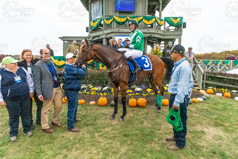 7th Race - THE OLD DOMINION TURF CHAMPIONSHIP