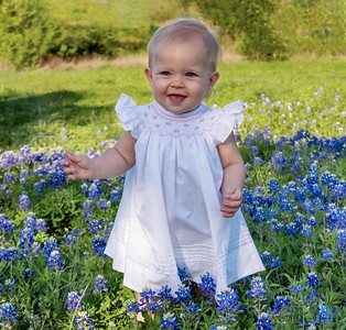 Quinn's Bluebonnets April '20
