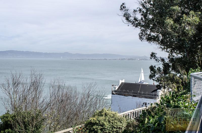 20141016_Alcatraz_0083.jpg