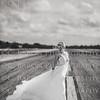 C-Baron-Photo-Houston-Impression-Bridal-Victoria-122