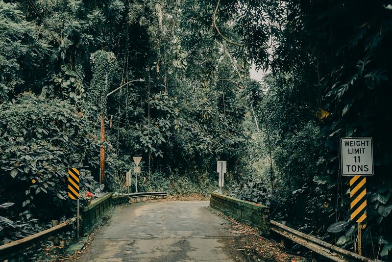 Hawaii20-362.jpg