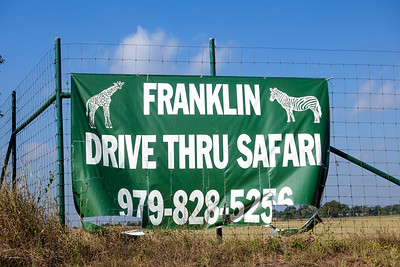 Franklin Safari