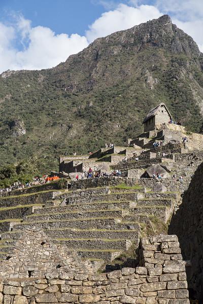 Machu Picchu_MG_3082.jpg