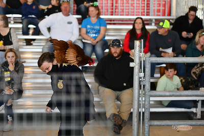 CFF 3/7/21 Awards, Poultry Auction and Misc